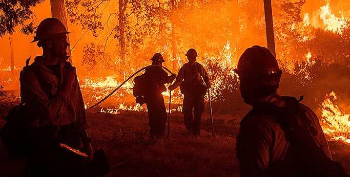 Brandmän slåss mot lågorna i Kalifornien. Katastrofen av historiska mått anses ha förvärrats av klimat-krisen.