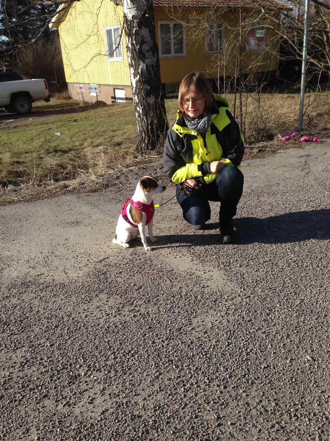 Hunden Speja var en av hundarna som letade.