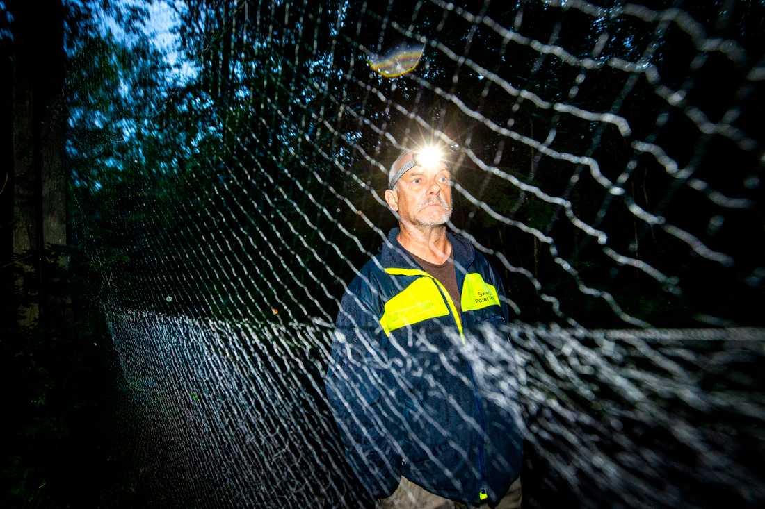 Forskaren Jens Rydell sätter upp nät i Stockholmsområdet för att fånga fladdermöss. Fladdermusen flyger in i nätet och faller ner i en påse.