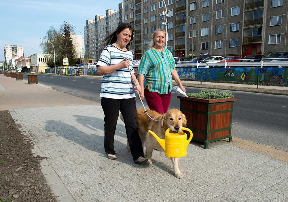 Ute och går. Vasvargatan är huvudstråket i Ozd. Några affärer. Hyreshus. Två damer med hund.