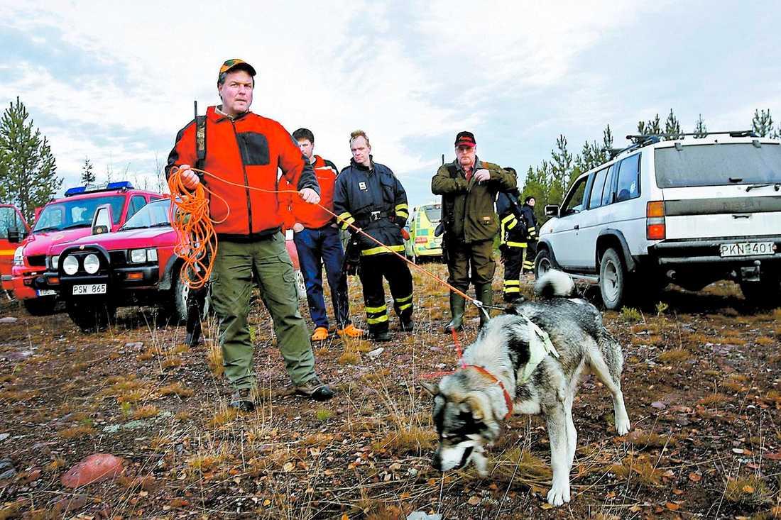 Jägare och personal vid länsstyrelsen ger sig ut i skogarna för att leta efter björnen.Foto : HÅKAN PERSSON/SCANPIX