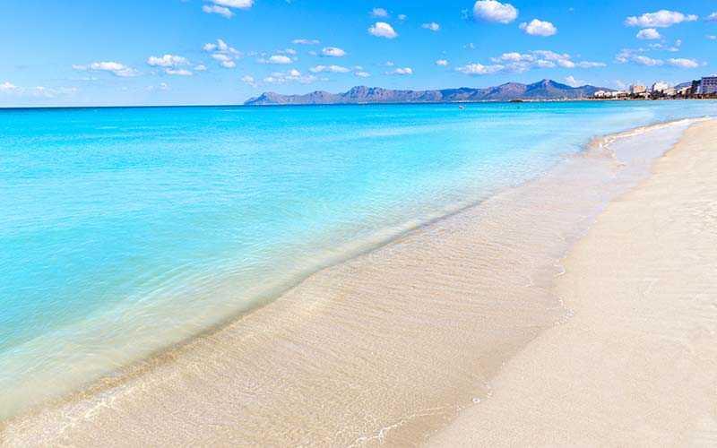 Stranden på Alcudia på Mallorca är väldigt uppskattad hos barnfamiljer, för de fina och långgrunda vattnet