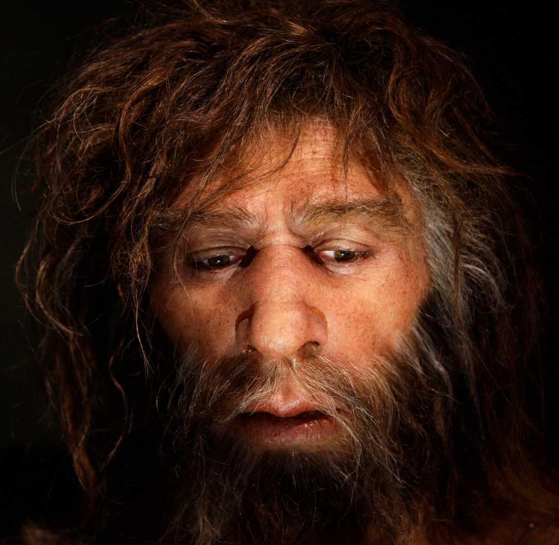Människans arvsmassa, förutom de med ursprung i Afrika, innehåller gener från neandertalarna. Därför tror forskarna att vår egen människoart, Homo sapien, stötte på neandertalarna i dagens Mellanöstern, eftersom det var därifrån vi sedan spreds både till Asien och Europa.