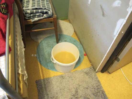 I en hink med urin i ett av rummen i fastigheten då toalett var ur funktion.