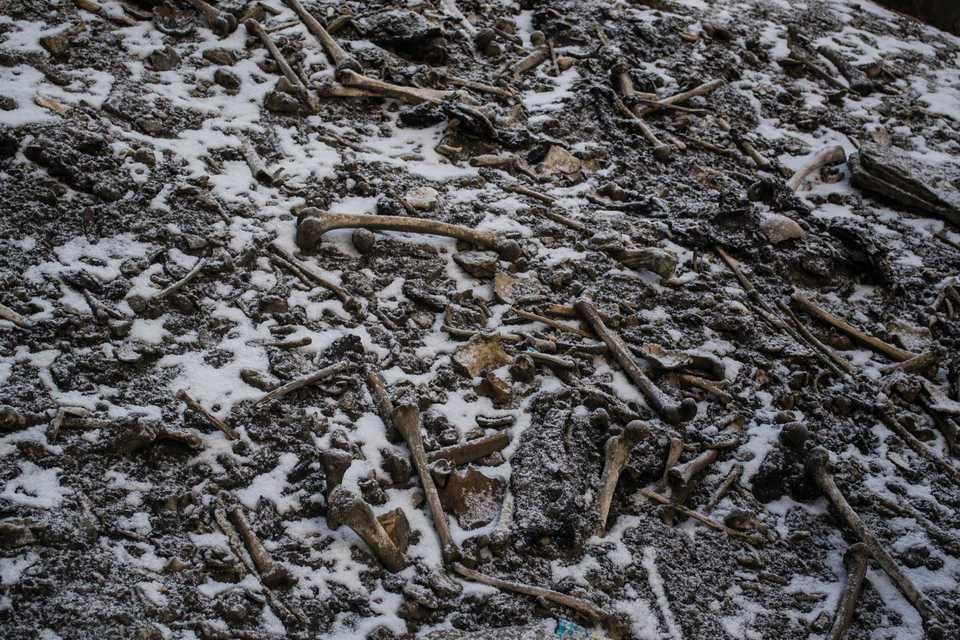 Analyser visar att individerna dog med upp till 1000 års mellanrum och att de kom från vitt skilda områden.