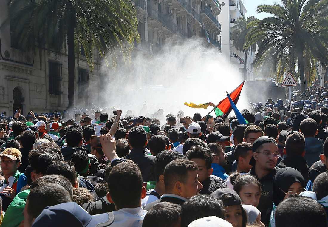 Polisen skjuter med vattenkanon mot demonstranter under fredagens massiva protester i Algeriets huvudstad Alger.