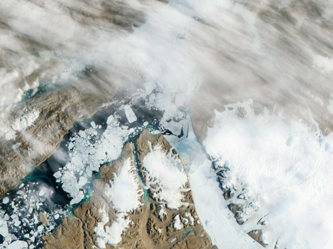Bildserien från Nasa visar hur glaciären till höger i bild spricker upp och släpper i väg ett enormt isflak ut i havet