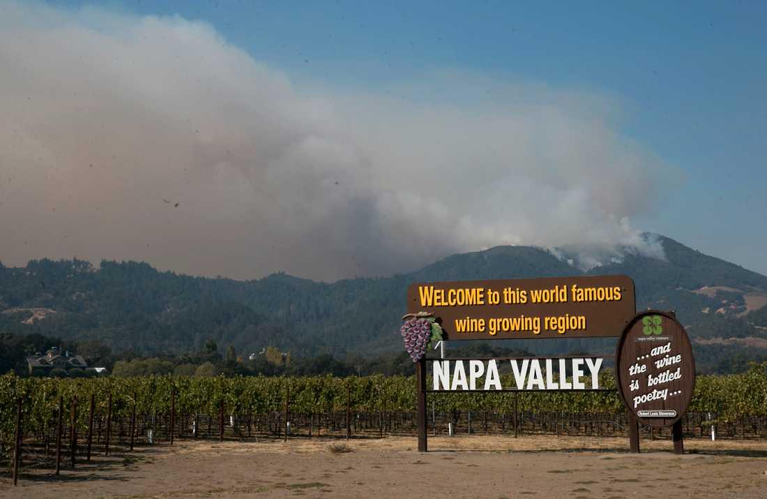Rök breder ut sig i Napa Valley. Arkivbild