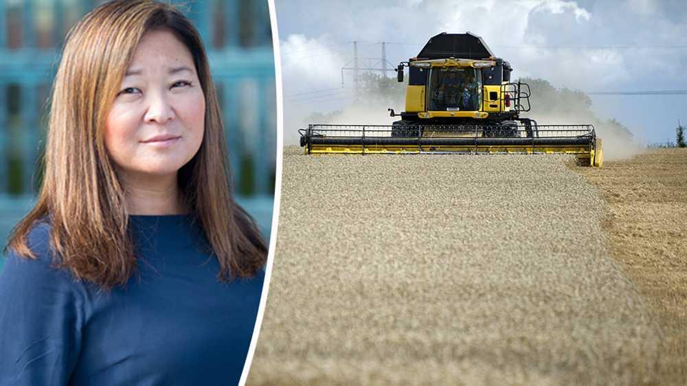 Nyligen beslutades även att ny växtförädlingsteknik, så kallad genom-editering, ska regleras som GMO. Detta trots att expertisen är överens om att teknikerna är väsensskilda. Det är helt uppenbart att den lagstiftning som reglerar växtförädling inte är anpassad efter dagens teknik, skriver Jessica Polfjärd, Europaparlamentariker (M).