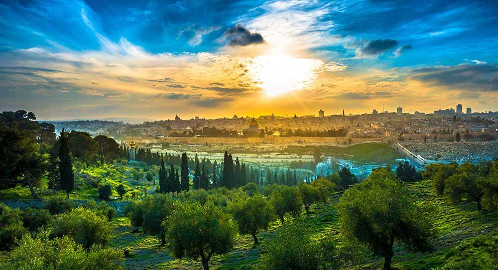 Från Olivberget har du en magisk utsikt över hela Jerusalem.