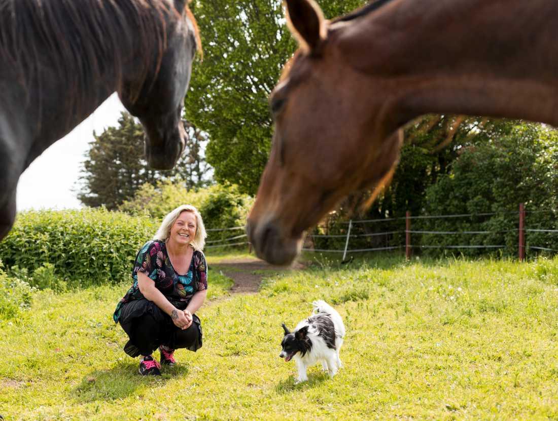 Djuren är otroligt präglade på Jessica. vart vi än går på gården har vi snart hundar, katter och getter i släptåg.