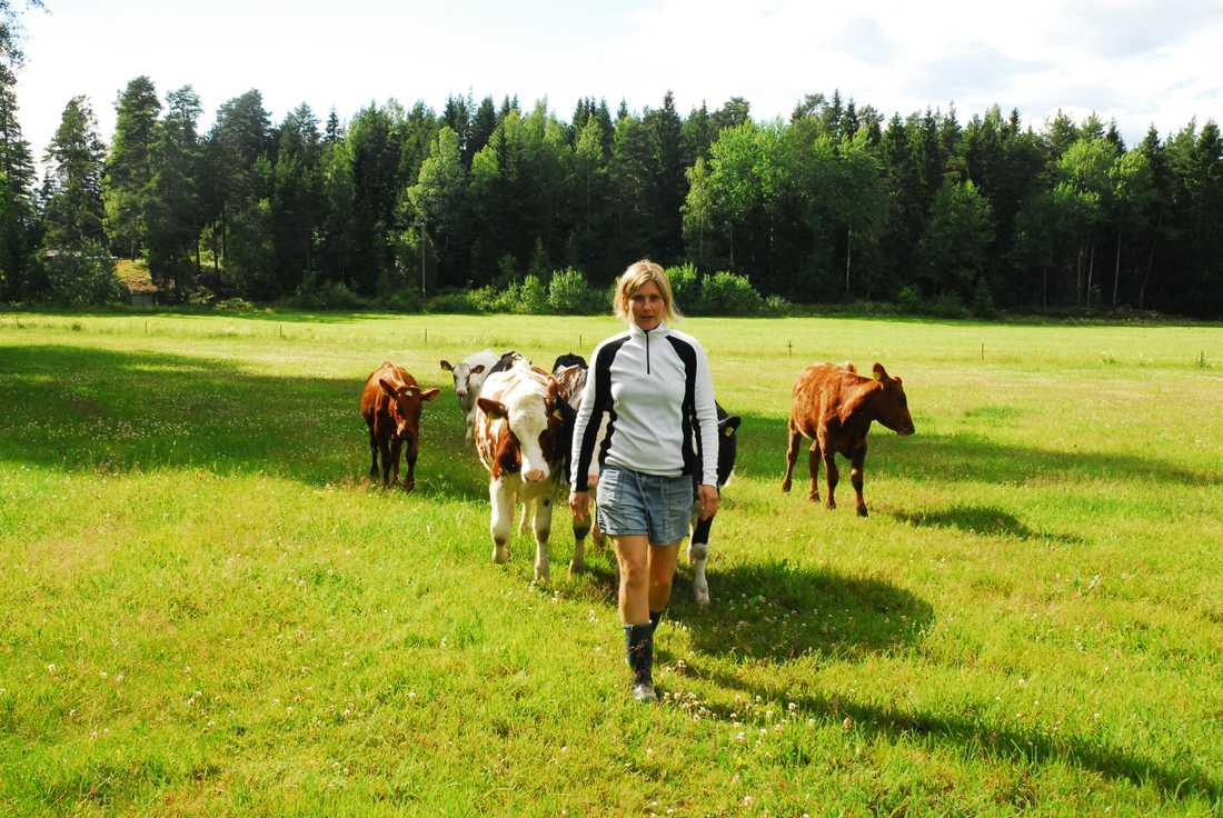 Anette driver en ekomjölkgård och har fått ta emot mycket hot och hat.