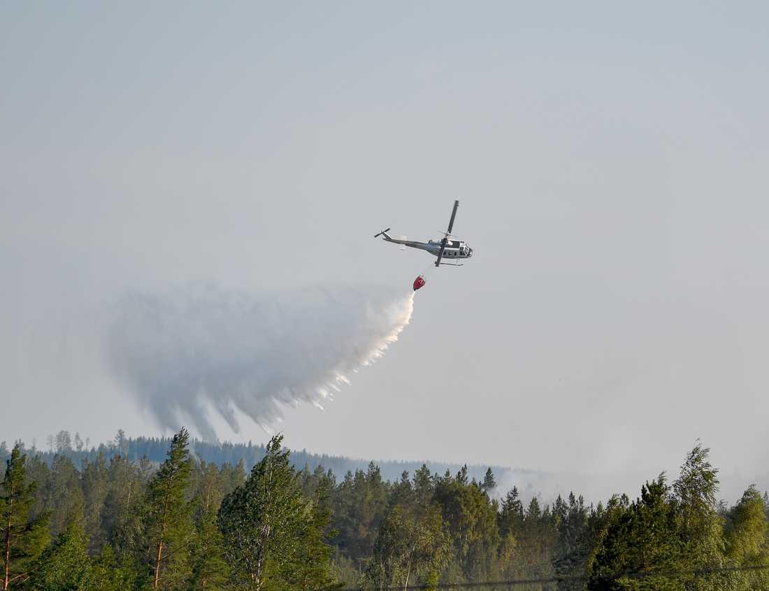 Helikoptrar är långsammare och tar mindre vatten än flygplan, men de är mer flexibla och kan skopa upp vatten även ur mindre vattendrag. Vattenbombning var avgörande när sommarens skogsbränder i bland annat Hälsingland bekämpades. Arkivbild.