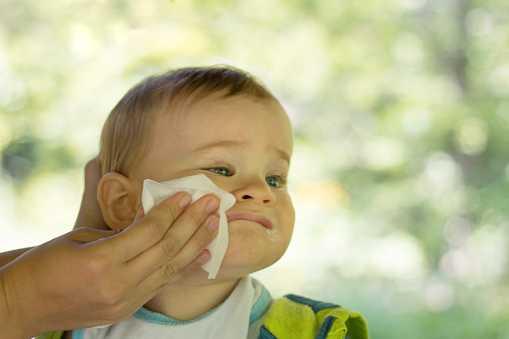 Våtservetter kan vara en bidragande orsak till allergier mot olika födoämnen.