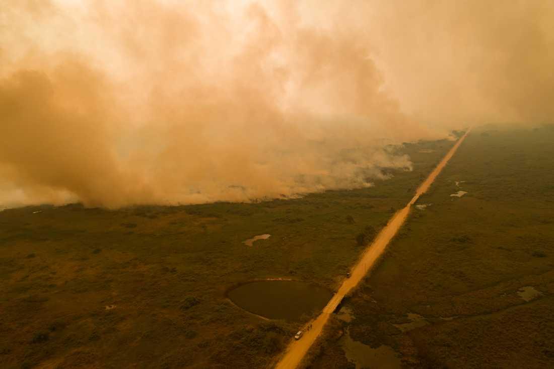 En kraftig skogsbrand i våtmarksområdet Pantanal i Brasilien i september. Arkivbild