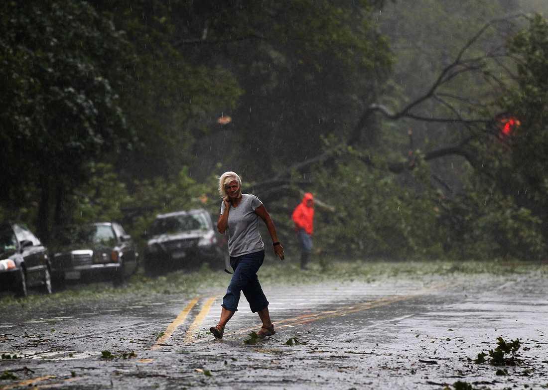 Brooklyn, New York: En kvinna vandrar bland omkullblåsta träd.