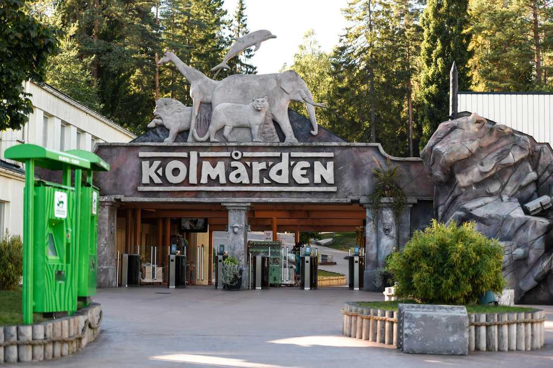 Kolmårdens djurpark utanför Norrköping öppnar delar av djurparken till påsk. Arkivbild.