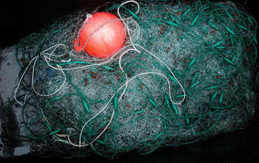 Borttappade fiskenät, hummertinor och andra herrelösa fiskeredskap är ett stort problem i haven. Arkivbild.