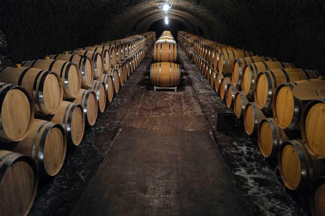 Tomma tunnor väntar på årets skörd i Anselme Selosses vinkällare i Avize.