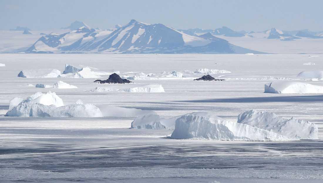 Myndigheterna varnar för tsunamirisk efter ett skalv vid Antarktis. Arkivbild.