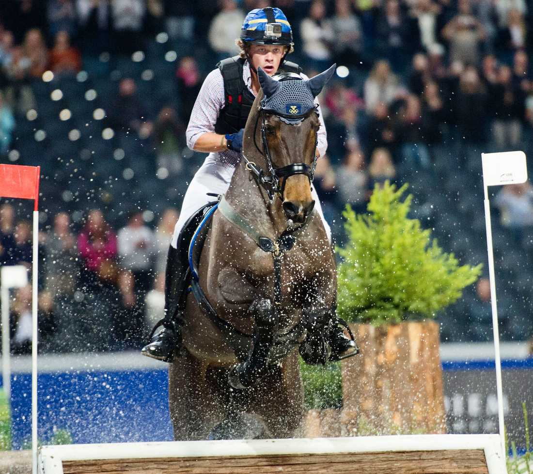 Angenämt problem  Ludwig Svennerstål är i stort sett garanterad en OS-plats. Det enda som är osäkert är vilken häst han ska tävla med. Antingen King Bob eller Aspe – som under Sweden International Horse Show i höstas.