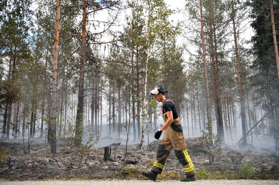 Skogsbrand i Sala i början av juni.