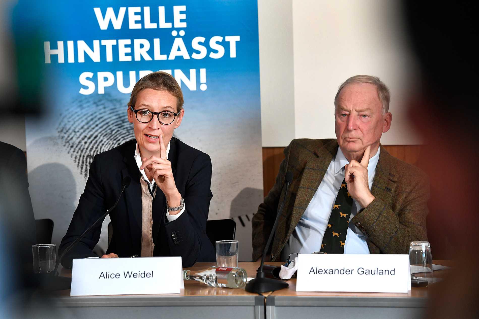 AfD:s partiledare Alice Widl och Alexander Gauland.