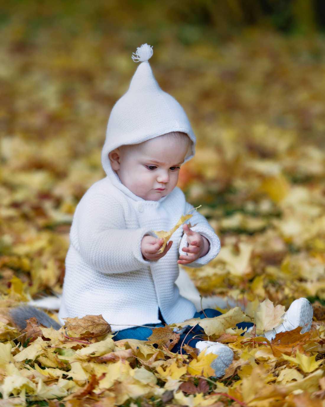 Vad kul det är att leka med löv! Den halvåret gamla Estelle fortsätter med sin favoritaccessoar – huvan– i favoritfärgen vitt.
