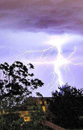 Elektromagnetiska fält finns naturligt i vår värld.