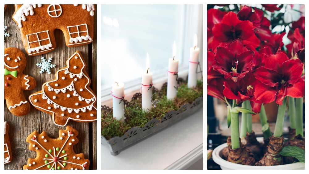 Julälskaren startar julfirandet med novent.