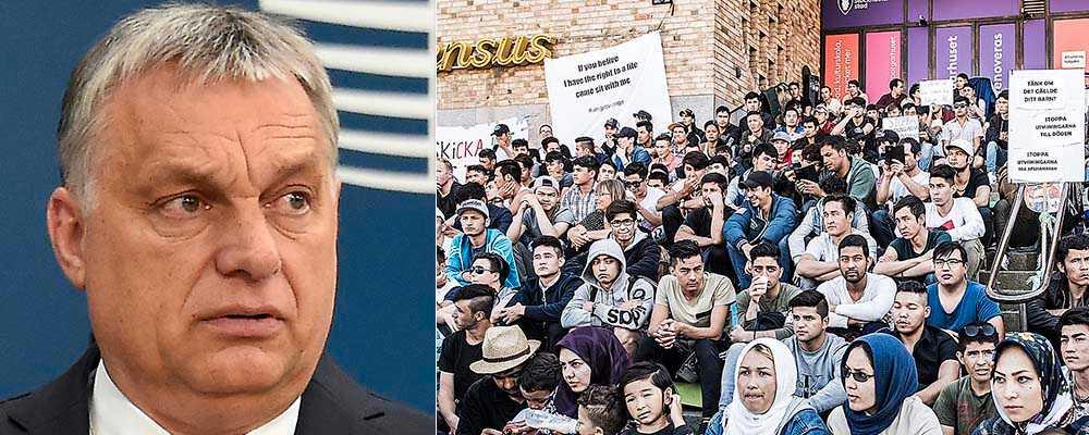 Viktor Orbáns idéer ligger närmare det liberala Europas praktik än de västliga ledarna vill erkänna, menar Rune Lykkeberg. T h manifestation på Medborgarplatsen i Stockholm till stöd för utvisningshotade afghanska pojkar.