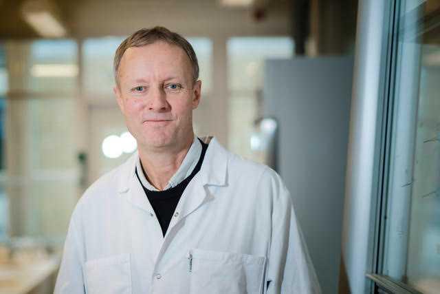 Börje Sellergren, professor Malmö universitet.