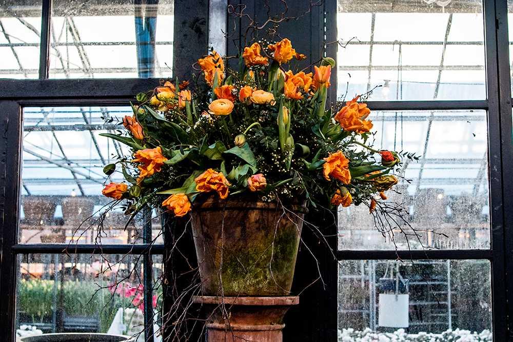 Blomsterarrangemang med tulpaner i centrum.
