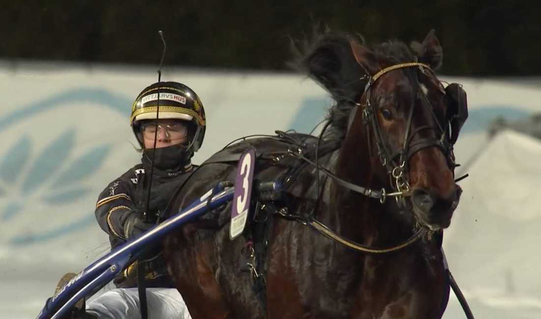 Sandra Eriksson och Björn Goops Farouk B.R. vinner V75–4, Lärlingschampions.