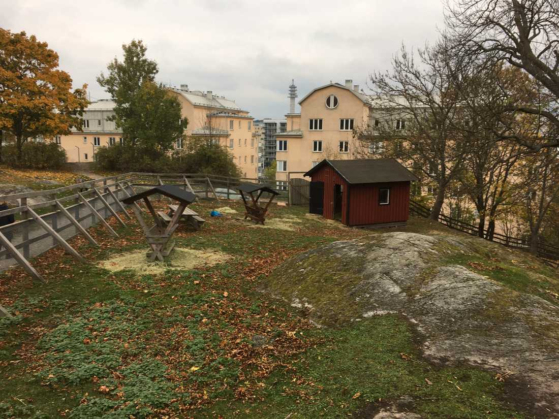 Stora Blecktornsparken på Södermalm i Stockholm.
