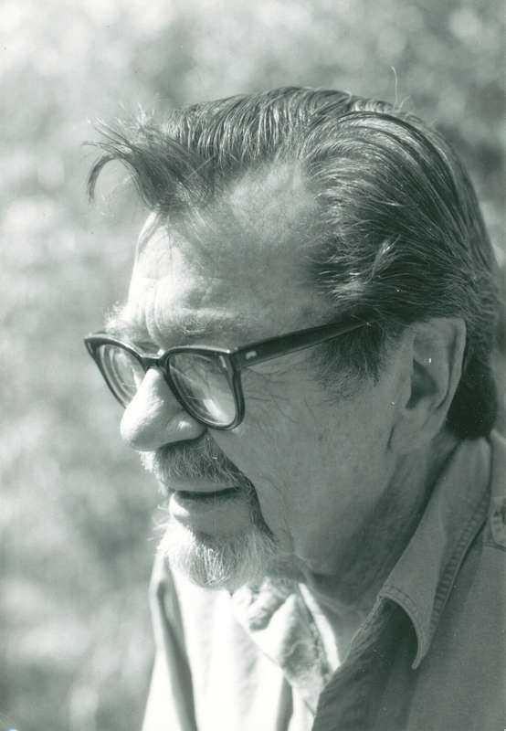 """John Williams (1922-1994) föddes i Texas och utbildade sig till lärare. Han skrev poesi och fyra romaner, varav en, """"Augustus"""", vann National Book Award 1973. """"Stoner"""" trycktes från början i endast 2 000 exemplar, men har nu getts ut på nytt i en rad länder."""