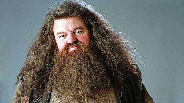 Rubeus Hagrid,  I Harry Potterfilmerna spelas Hagrid av Robbie Coltrane.