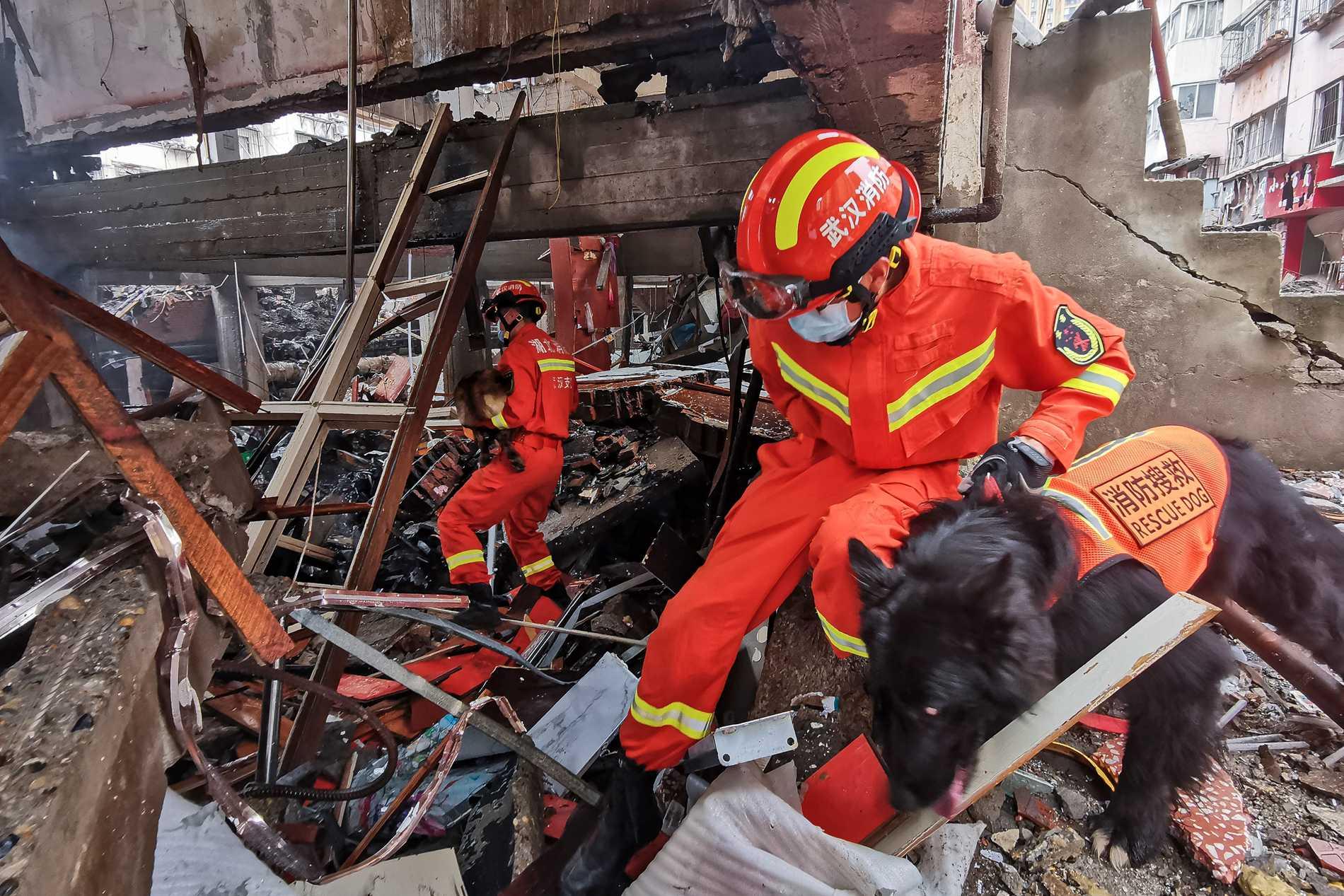 Räddningspersonal tog hjälp av hundar i sökandet efter överlevande efter explosionen.