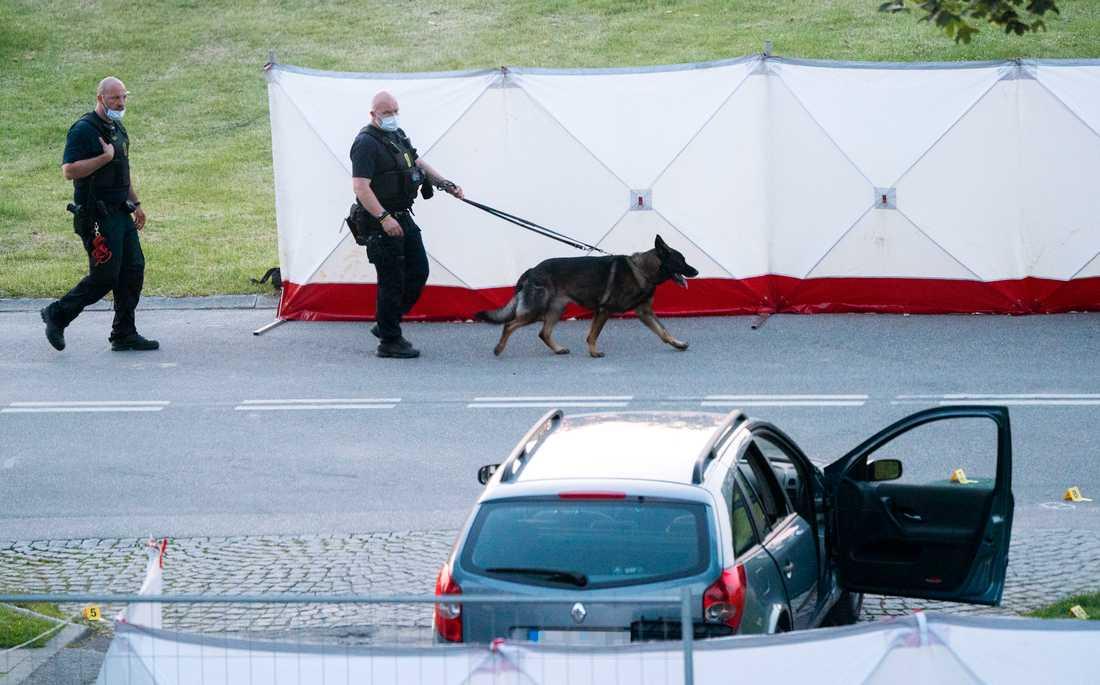 Polis och kriminaltekniker på plats efter att två människor skjutits ihjäl i en svenskregistrerad bil i Köpenhamnsförorten Herlev,