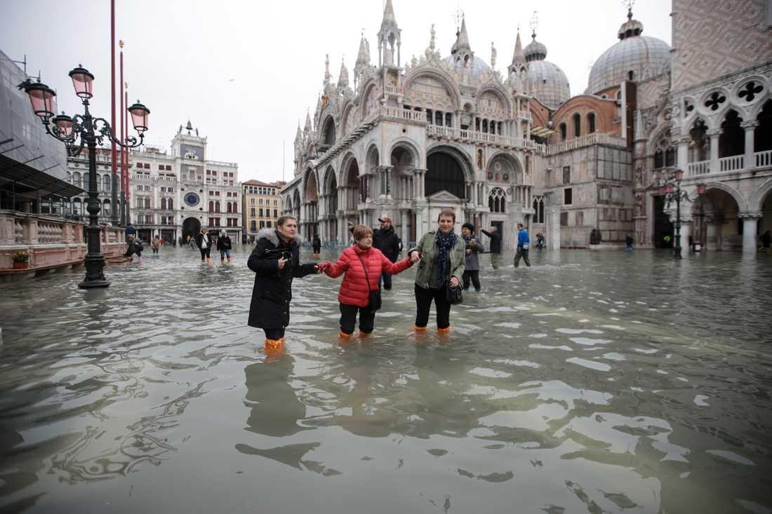 Människor vadar i vattnet på översvämmade Markusplatsen i Venedig.