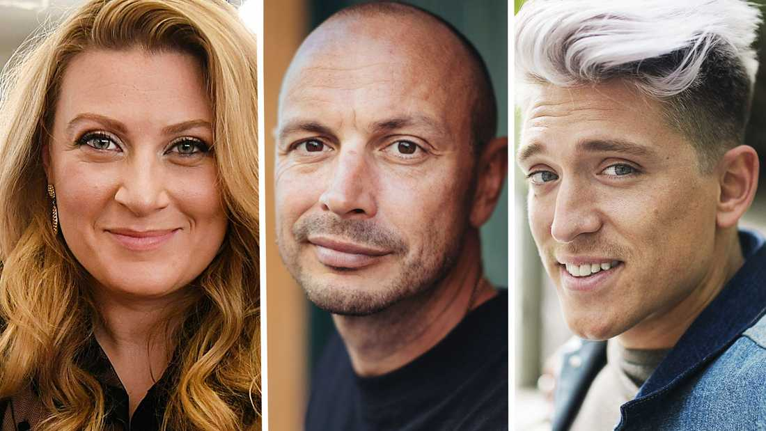 Sarah Dawn Finer, Petter och Danny Saucedo har alla bolag som fått krisstöd.