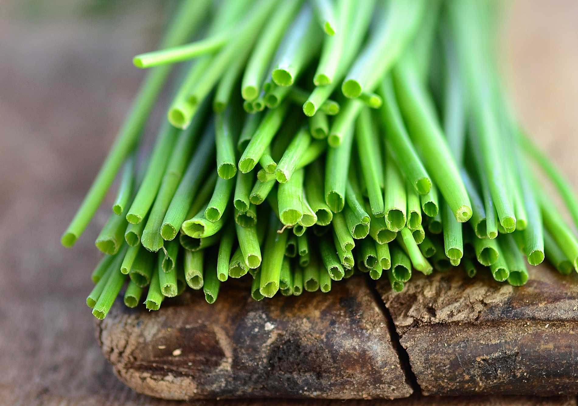 Gräslök är en klassisk smaksättare till fisk, äggrätter och bakad potatis.