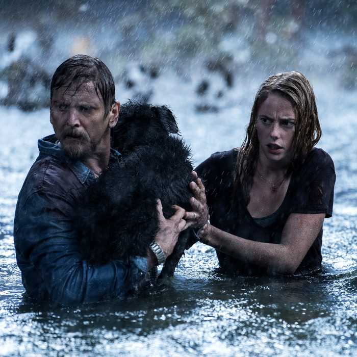 "Barry Pepper och Kaya Scodelario i ""Crawl""."