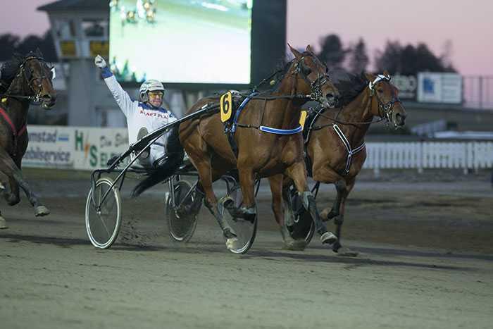 Andrareserven Juvels Boy fixade miljoner till Kinna Servicekiosken vann överlägset mest i Sverige tack vare hästens seger i V75-7 med Micael Larsson i sulkyn.