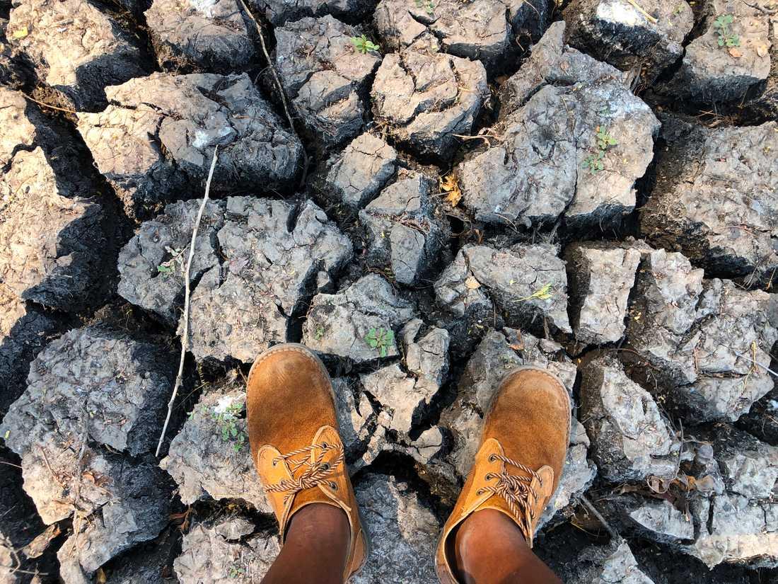 Länder i södra Afrika plågas av torka. Bilden är från en uttorkad vattenkälla i Zimbabwe. Arkivbild.