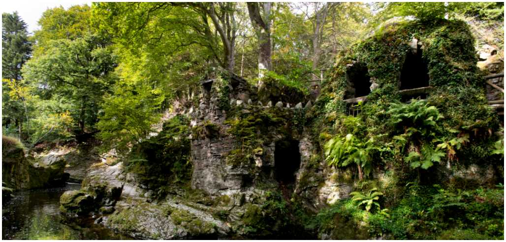 Tollymore Forest.