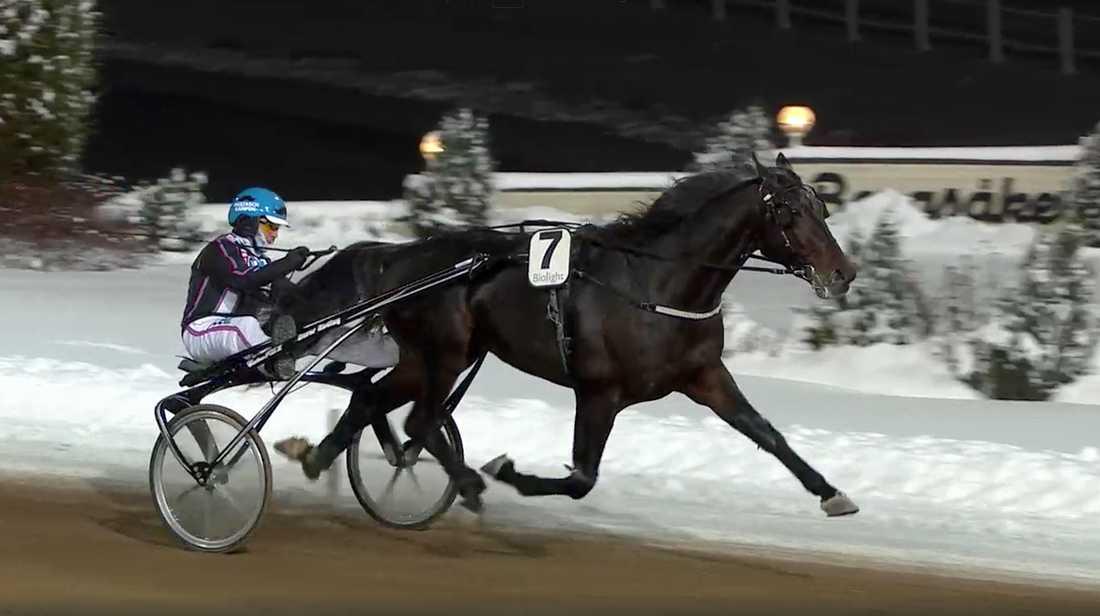 Ulf Ohlsson vann med Bungle Rain.