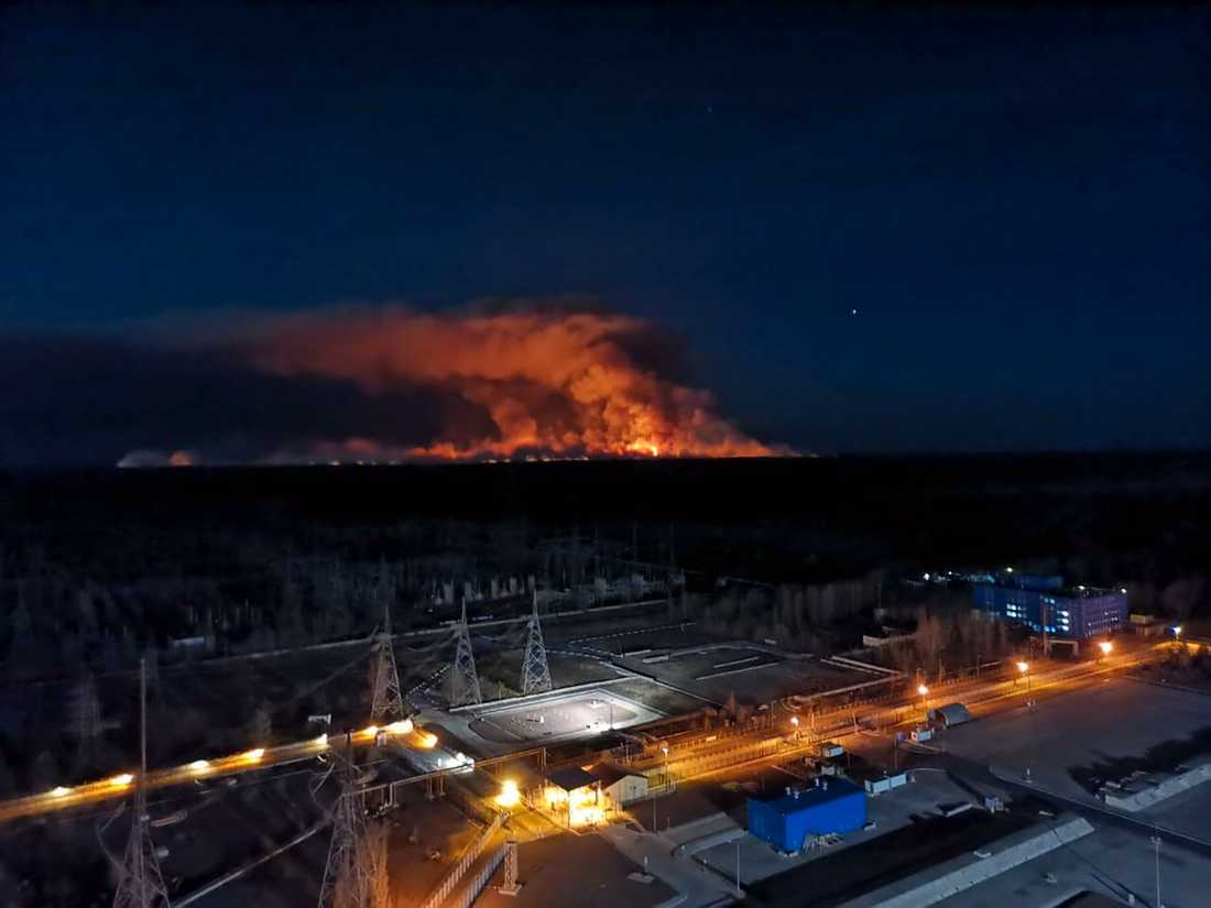 Skogsbränderna syntes från reaktortaket i Tjernobyl i fredags.