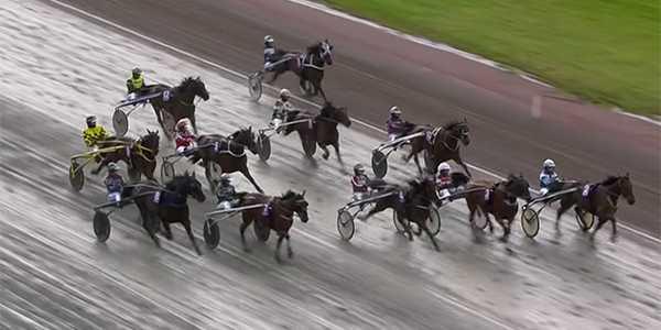 Starten i V75–4. Häst nummer 1 Untilwemeetagain högst upp i bild.