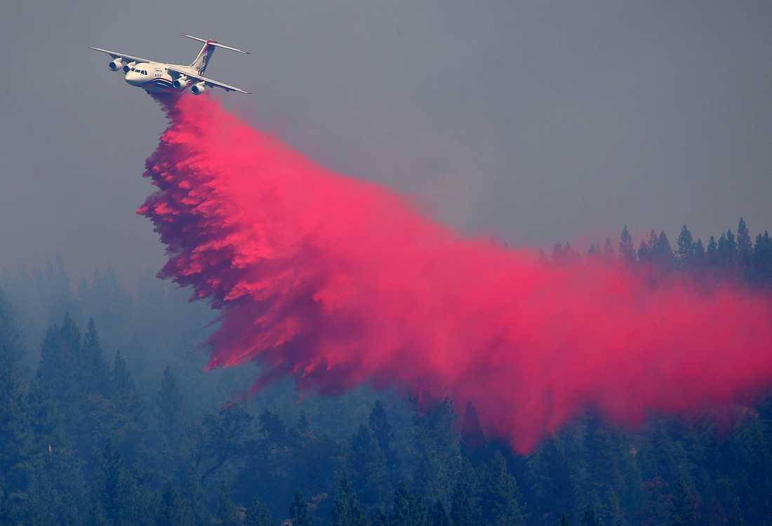Ett flygplan släpper ett ämne som ska hjälpa till att hejda brandens framfart.